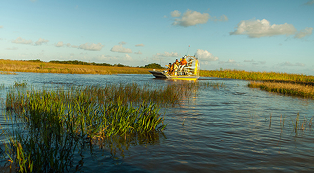 Everglades National Park Florida Places To Visit In