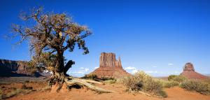 Magnificent West – 7 Days Tour From San Francisco To Yosemite Park, Las Vegas, Hoover Dam, Sedona, M