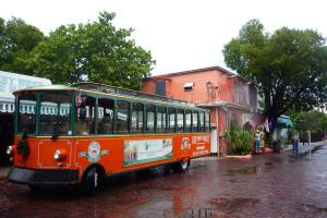 Key West Day Trip & Hop-on, Hop-off Trolley Tour Packages